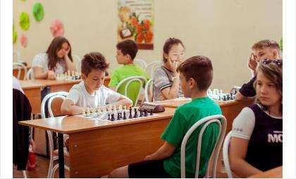 На фестиваль в Бердск съехались 322 шахматиста