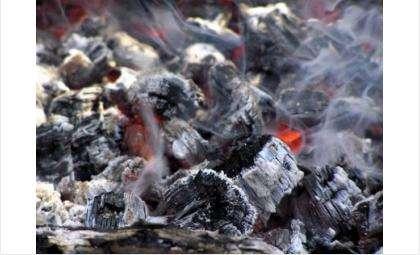 В МЧС считают, что в мангале не потушили уголь