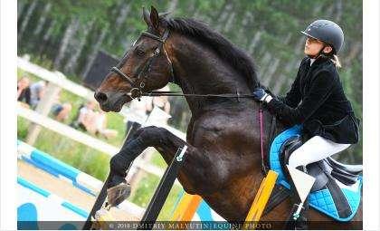 Всадники-любители соберутся на конный кубок в Речкуновской зоне отдыха в Бердске