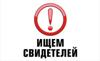 Разыскивают записи регистраторов – кто видел похищение из «Опеля» в Бердске?