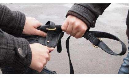 Рано утром грабитель на ул. Ленина отобрал сумку у жительницы Бердска