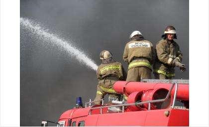 Пожарные и спасатели совместно спасли мужчину из огня