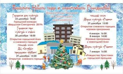 Главную ёлку Бердска откроют 28 декабря в парке у «Ориона»