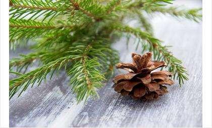 Спокойных вам новогодних каникул!