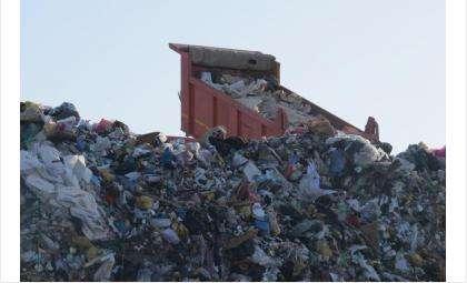 """Вывозом мусора займётся компания """"ЭкоСервис"""""""
