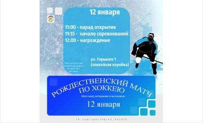 В хоккей сыграют ветераны и молодежь Бердска