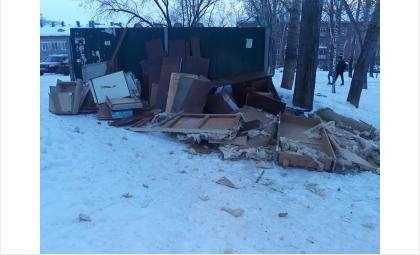 Читатели сайта Бердск-Онлайн предоставляют фотографии - так выглядят мусорные площадки в начале января 2019 года