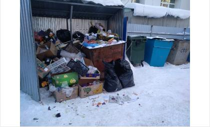 С 1 января таких мусорных завалов в Бердске быть не должно. Но они есть!
