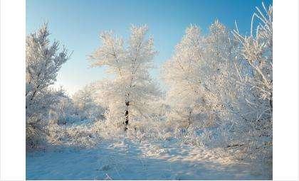 Понижение температуры начнётся 31 января