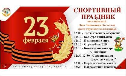 Спортивный праздник, посвящённый Дню защитника Отечества, состоялся в Бердске