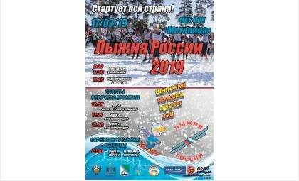 «Лыжня России» в Бердске из-за морозов переносится на 17 февраля