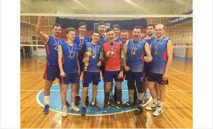 Бердские волейболисты выиграли чемпионат Новосибирской области