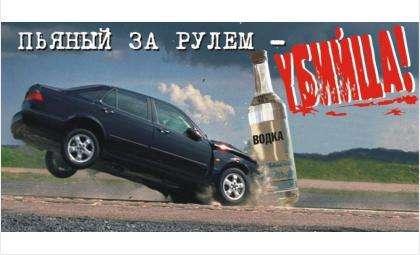 Рейд «Нетрезвый водитель» с 7 по 11 марта пройдет в Бердске