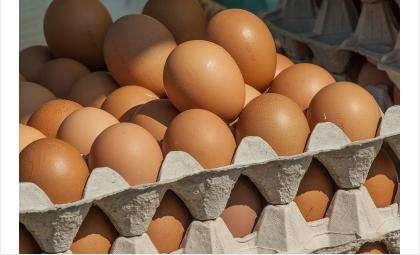 Миллиард яиц за год снесли куры Новосибирской области