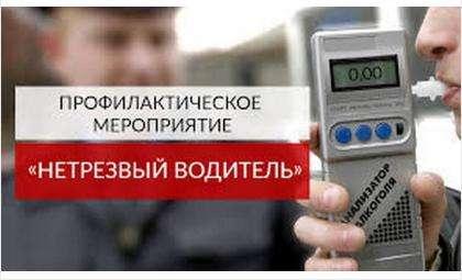 С 29 марта в регионе начнется операция «Нетрезвый водитель»