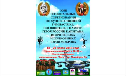 Турнир по художественной гимнастике памяти Лелюха и Мокрова начался в Бердске