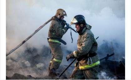 Семерых детей из многодетной семьи спасли соседи на пожаре в Искитимском районе