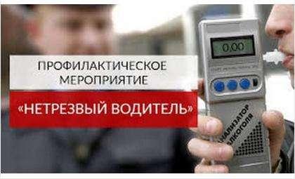 В выходные дни ГИБДД проведет рейдовые проверки «Нетрезвый водитель»