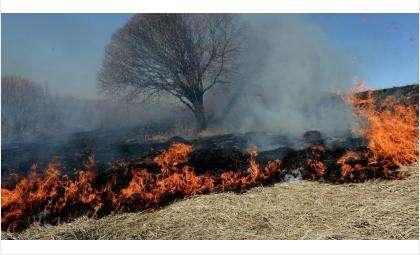 Пришла весна – горит трава!
