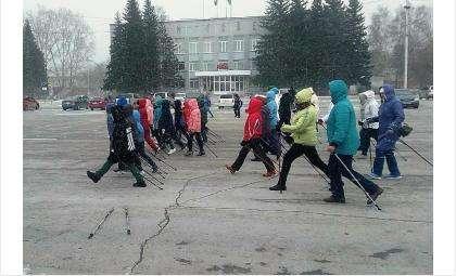 Бердчан приглашают на уникальный фестиваль скандинавской ходьбы