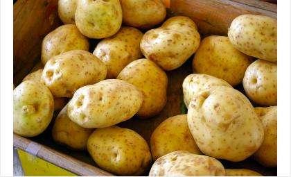 Крахмал будут получать из картофеля