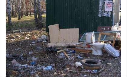 Завалы мусора у контейнера в Бердске, Микрорайон, 42