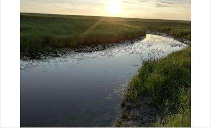 Двое детей в один день утонули в Новосибирской области