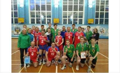 Весь пьедестал чемпионата Бердска по волейболу – у бердчан