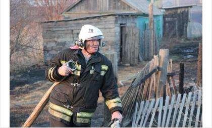 Более 2,3 млн рублей взыскали с поджигателей травы в Новосибирской области