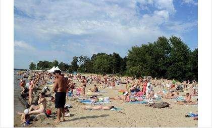 В Бердске ни один из семи пляжей ещё не получил разрешения на работу
