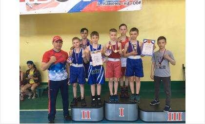 Семь медалей завоевали боксеры из Бердска в турнире в Камне-на-Оби