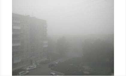 По утрам в Бердске плохая видимость