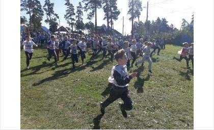 В Кроссе нации-2019 в Бердске участвовали 2150 человек