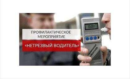 Рейд «Нетрезвый водитель» с 11 по 14 октября проводится в Бердске и Новосибирске