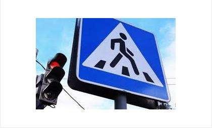 Операцию «Пешеходный переход» проводит ГИБДД в Бердске