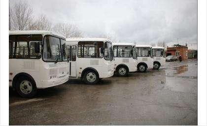 Новые автобусы готовы к выходу на линии