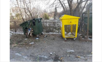 В Искитиме сгорели пластиковые контейнеры для раздельного сбора мусора