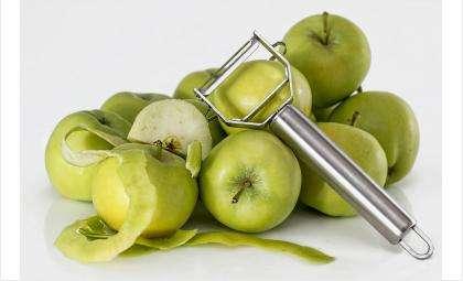 Алиментщица год назад купила сыновьям килограмм яблок и показала приставам чек
