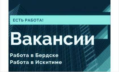 Вакансии Бердска на 29 ноября 2019 года. Работа в Бердске