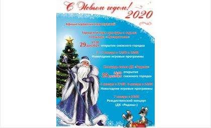 Афиша Новогодних мероприятий в Бердске