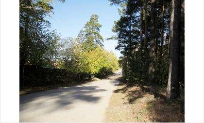 Под Бердском находится четыре посёлка: Речкуновка, Новый, Светлый и Вега