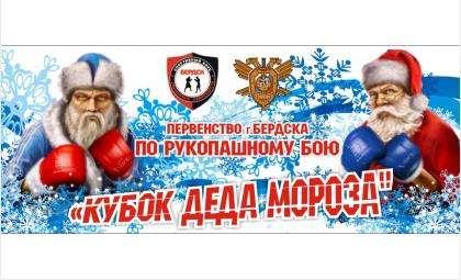 Кубок Деда Мороза-2020 по рукопашному бою пройдет в Бердске