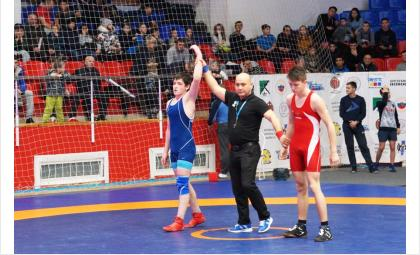 Международный турнир по греко-римской борьбе памяти Максимова проходит в Бердске в 41-ый раз