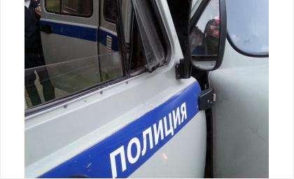 Полиция задержала злоумышленника