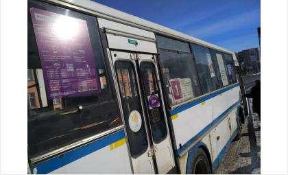 В БАТП в настоящее время 39 автобусов