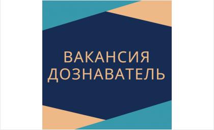 В ОНДиПР по Бердску требуется дознаватель