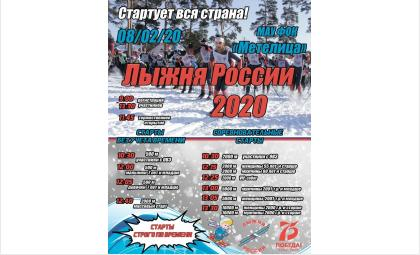 «Лыжня России-2020» в Бердске пройдет 8 февраля на базе «Метелица»
