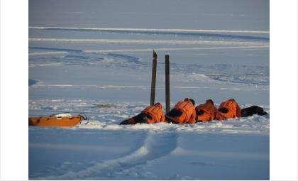 Спасатели помогают тем, что проваливается под лёд