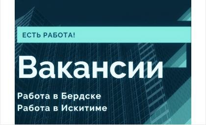 Вакансии Бердска на 22.02.2020 года. Работа в Бердске