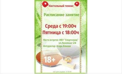 В Бердске открылась новая бесплатная секция по настольному теннису